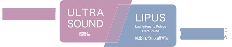 ULTRA SOUND / LIPUS