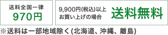 平日13時までのご注文最短当日出荷、送料全国一律970円、9,000円(税別)以上送料無料