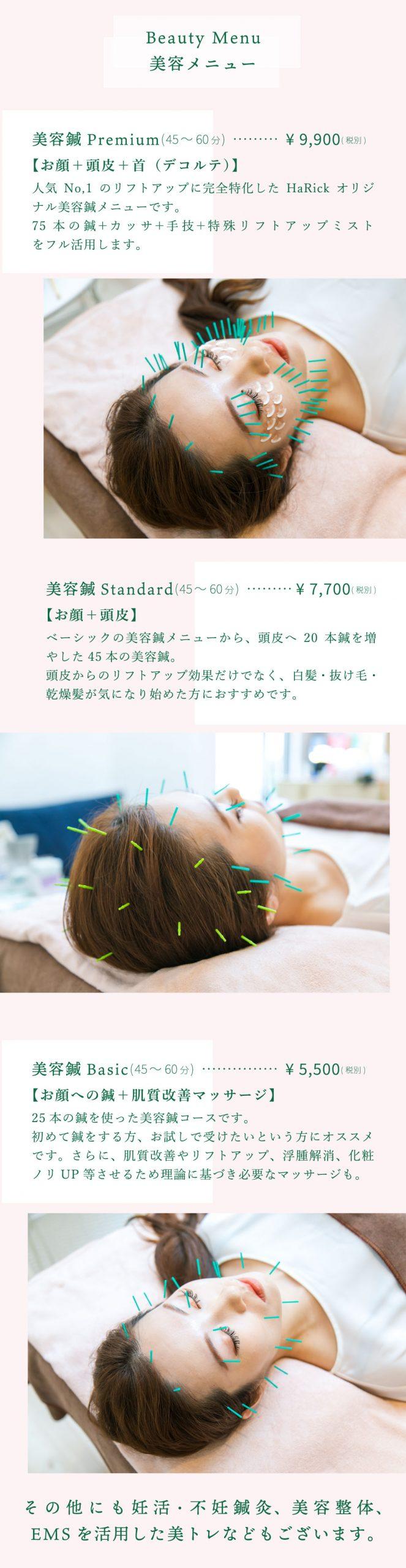 HaRick美容鍼灸整体のメニュー